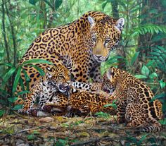 Jaguar painting by Gabriel Hermida