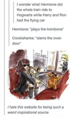 Well, Hermione didn't had Crookshanks in second year yet, but this is still hilarious
