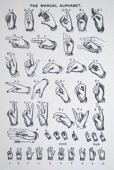Alphabet hand gestures