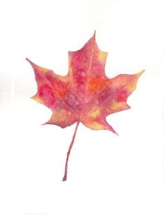 Bright Red Orange Yellow Maple Leaf / 5x7 Print / Watercolor Painting Fall Autumn Check out my painting in etsy shop: EverlastingFantasy!