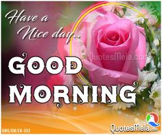 459 Best Sweet Good Morning Messages Images Good Morning Good