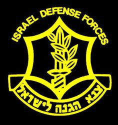 IDF- supporting my youngest cousin as he is the last to go in and he needs all the support he can get at this time