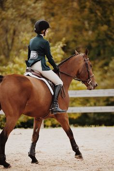 5 Exercises To Create a Fitter And Stronger Horse - The Rider's Reins