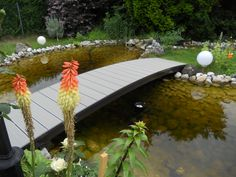 Terassenböden in Rohrbach Garden Bridge, Outdoor Structures, Flowers, Simple, Nice Asses