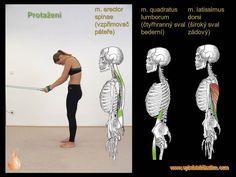 Text Posts, Anatomy
