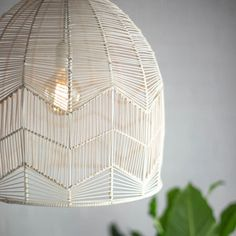 rattan pendant lighting. More Information. Lace Rattan Pendant Light Fixture. Lighting S