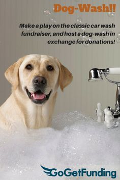 Heres a different fundraiser the fundraising dog wash dog wash make a play on the classic car wash fundraiser and solutioingenieria Images