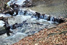 https://flic.kr/p/RVMsFq | Icy stream / Jeges patak | bach  eisigen  erdő  forest  icy  jeges  patak  stream  tél wald  winter