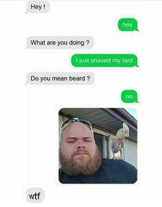 738 points • 168 comments - Why would I shave my beard? - IWSMT has amazing images, videos and anectodes to waste your time on