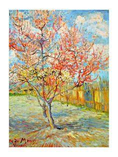 Peach Tree in Bloom at Arles, c.1888 Giclee Print by Vincent van Gogh at Art.com