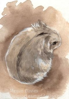 Russian Dwarf Hamster ACEO by Pannya on deviantART