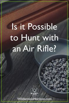 Can you hunt deer with an Air Rifle? Deer can be successfully hunted with air rifles but it strongly depends on the specific caliber used and which State you are hunting in. Archery Hunting Bowhunting, Waterfowl Hunting, Crossbow Hunting, Hunting Jackets, Hunting Clothes, Hunting Tips, Deer Hunting, Air Rifle Hunting, Hunting Accessories