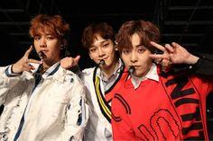 EXO-CBX - 170518 Nippo TV BuzzRhythm promotional image  Credit: Nippon TV. (日本テレビバズリズム) Exo Xiumin, Exo Chen, Tao, Exo 2017, Kim Minseok, Xiu Min, Exo Members, Debut Album, K Idols