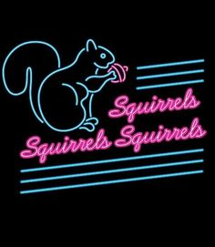 Squirrels, Squirrels,squirrels!!! You see them everyday but what do you really know about them?  :-)