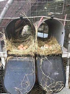 chicken-nesting-box