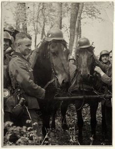 Image result for german soldiers groom horse