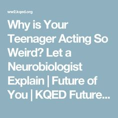 Why is Your Teenager Acting So Weird? Let a Neurobiologist Explain   Future of You   KQED Future of You   KQED Science