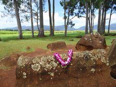 Oahu Family Activities: Kukaniloko Birthing Stones