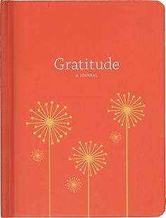 Gratitude Journal - Born from one person's personal experiment w/ positive psychology exercises, this journal is designed to help keep your happiness at the front of your mind. A wonderful gift for a friend or relative.