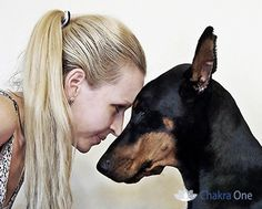 Reiki is a natural and simple method which is not invasive and is an effective way to calm, relax and rebalance an animal. When an animal is relaxed, it works better physically and mentally. Any animal, reptile or bird may accept energy work. Even plants and trees appreciate the extra attention.    Read full article here: https://www.c-one.net/reiki-for-animals/