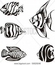 Set of black and white tropical fish. Black and white tropical fishes. set of black and white vector illustrations. Fish Patterns, Stencil Patterns, Pattern Art, Mandala Art, Fish Stencil, Arte Tribal, Fish Drawings, Sea Fish, Fish Design
