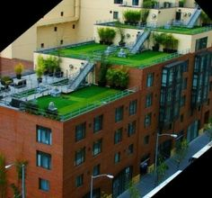 Green Roof - roof lawns