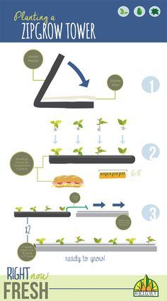 Planting a ZipGrow tower is both super simple and super quick. In this post, we've broken it down into easy steps so that you can get started right away.