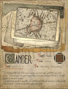 7 pages set about CANCER Astrological Sign Correspondences. They are an ideal addition to your own Wicca Book of Shadows. Astrology Zodiac, Astrology Signs, Zodiac Star Signs, Astrological Sign, Cancerian, Taurus And Gemini, Magic Herbs, Herbal Magic, Practical Magic