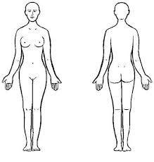 Resultado de imagen de imagen de cuerpo humano