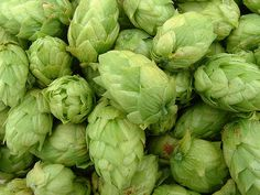 Hops - For Infusion page