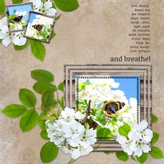Leigh Penrod A FRESH NEW DAY  http://www.godigitalscrapbooking.com/shop/index.php?main_page=product_dnld_info&cPath=29_387&products_id=27992 template - Lissy Kay Designs GOT THE BLUES