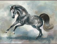 Painted Horses, New Work, Behance, Digital, Gallery, Check, Painting, Animals, Animales