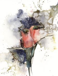 Birds' couple original watercolor painting two tropical