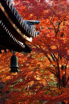 古都の朝-南禅寺 #南禅寺 #Autumn #Kyoto