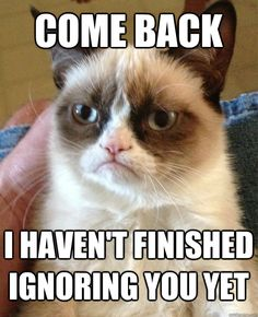 come back i havent finished ignoring you yet - Grumpy Cat
