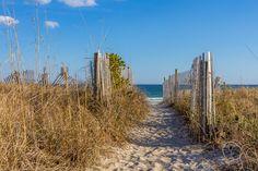 Path Through The Dunes  #Beach #Dune #Dunes #Path #Ocean #Sky #Fence #Sand #Footprint #FootprintsInTheSand #Grass #Growth #Wave #Waves #Cloud #Clouds