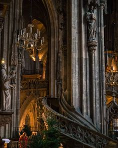 #travelphotography #travel #holiday #holidayphotos #photography #europe #austria #vienna #cathedral #interior #lowlight #dramatic #interiorphotography #architecture #beam #architecturephotography by snowver1987
