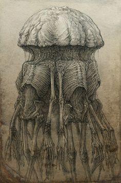 Drawings by Kirill Semenov,  Skirill on DeviantArt | via Mar Cantón (OcéanoMar)  || https://www.pinterest.com/pin/199495458471063266/