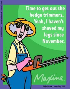 Time to get out the hedge trimmers. Yeah, I haven't shaved my legs since November.