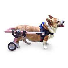 Walkin' Wheels Dog Wheelchair Med/Small Pink - Commercial Bargains Inc. - 1