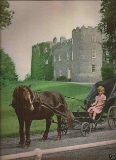 Leixlip Castle, Ireland