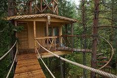 Treehouse anyone?