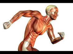 Things That Happen To Your Body When you Run Everyday - YouTube