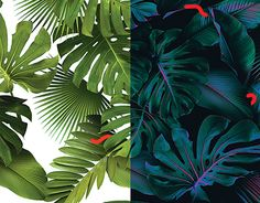 "Check out new work on my @Behance portfolio: ""Tropical leaf variations"" http://be.net/gallery/59482035/Tropical-leaf-variations"