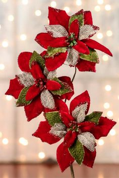 Embellish your surroundings during Christmas weddings, New Year's, and other fanciful events!