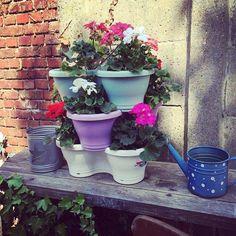 Pastel pots Elho  in rustic garden