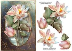 Beautiful Lotus Flowers With Decoupage on Craftsuprint designed by Anne Lever - This topper features beautifully painted lotus flowers growing out of a gorgeous frame. It has decoupage to add depth.  - Now available for download!