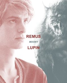 Remus Lupin.( 30 Day Harry Potter Challenge Day-4, favourite Order member, no repeats. Mine is Lupin, but not the movie representation. My Moony definitely does not look like a puppy. But he looks mature and thin and bookish. He's like me, but male. Lupin is everything I admire – gentlemanly, calm, nerdy, and a humble human being. Humble to the point of hating himself actually, but that can be remedied. All he needs is love. Anyone see Dora around? ;P )