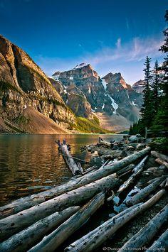 Driftwood in Moraine Lake, Alberta, Canada.  By Duncan McKinnon.