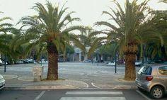 Ci puoi trovare all'indirizzo piazza redentore 2 San Benedetto del Tronto 0735656695